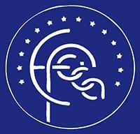 logo_efcca